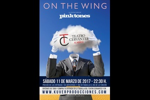 PINK TONES - ON THE WING
